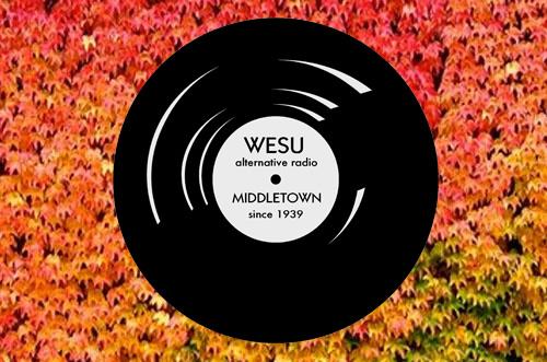 fall WESU window